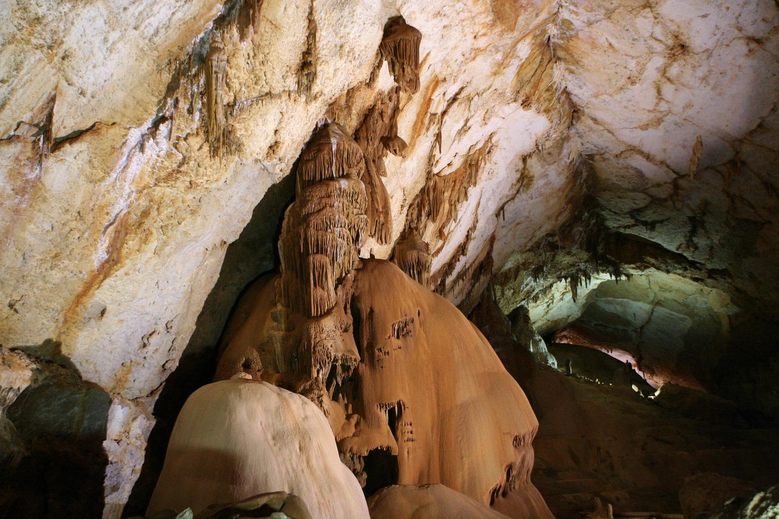 эталон, пещера ялтинская фото слой кутикулы
