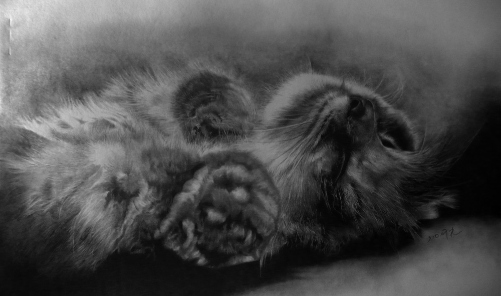 в альбоме. chucha.  Опубликовал.  Рисунок спящего кота. котэ.
